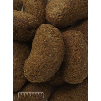 Mazuri Primate Maintenance Biscuit 5MA2