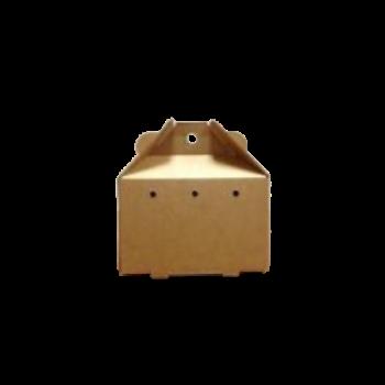 TransBox, Medium